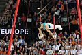 2015 European Artistic Gymnastics Championships - Rings - Artur Tovmasyan 03.jpg