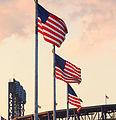 2015 US Open Tennis - 11 Flags Near Citifield (20795192060).jpg