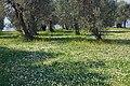 2017-04-10 04-14 Gardasee 183 Sirmione (34340735876).jpg