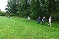 2019-08-17 Hike Hardter Wald. Reader-01.jpg