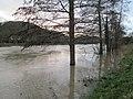 20200204Saarhochwasser06.jpg
