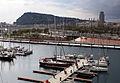 260 Montjuïc i el Port Vell des de la terrassa del Museu d'Història de Catalunya.JPG