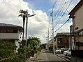 2 Chome Jindaiji Higashimachi, Chōfu-shi, Tōkyō-to 182-0012, Japan - panoramio (7).jpg