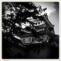 2 Chome Kuruwamachi, Ōgaki-shi, Gifu-ken 503-0887, Japan - panoramio (2).jpg
