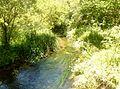 575 Rivière de Pont-l'Abbé en amont de l'étang du Moulin Neuf.JPG