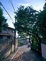 5 Chome Denenchōfu, Ōta-ku, Tōkyō-to 145-0071, Japan - panoramio.jpg
