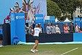 8 Eastbourne Tennis 2015 (48787817837).jpg