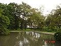 AIT - panoramio - Seksan Phonsuwan (41).jpg