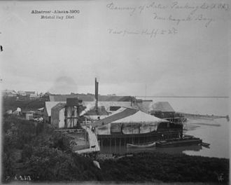 Alaska Packers' Association - APA cannery, Arctic Packing Co., Nushagak Bay, 1900