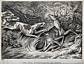 A stag with his antlers caught in a bush is pounced on by ho Wellcome V0021541.jpg