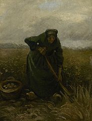 Woman Lifting Potatoes