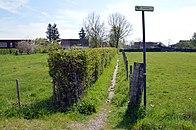 Aardrede tussen Jabekestraat en jaagpad 2.jpg