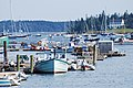 Acadia 2012 08 23 0320 (7958531244).jpg