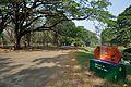 Acharya Jagadish Chandra Bose Indian Botanic Garden - Howrah 2011-01-08 9754.JPG