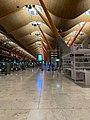 Aeropuerto de Barajas Oct 2020 18 03 25 383000.jpeg