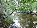 Afon Ceiriog - geograph.org.uk - 568428.jpg