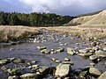 Afon Diliw Up-Stream - geograph.org.uk - 38086.jpg