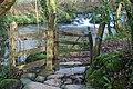 Afon Dwyfor - geograph.org.uk - 684043.jpg