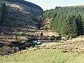 Afon Tywi and Hirnant near Nant y Stalwyn, Ceredigion - geograph.org.uk - 1044076.jpg