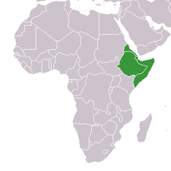 Lever på afrikas horn