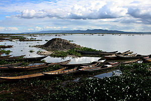 Bato, Camarines Sur - Lake Bato is the largest lake in the Region