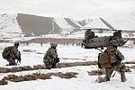 Air assault mission DVIDS233434.jpg