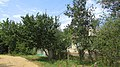 Akhtyrskiy, Krasnodarskiy kray, Russia - panoramio (20).jpg