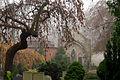 Akl schoeneberg altfriedhof figur und baum 21.11.2010 10-14-11.jpg