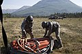 Alaska Army National Guard Black Hawk crews help fight Alaska fires 150617-Z-CA180-001.jpg