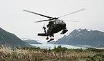 Alaska National Guard (37175028484).jpg