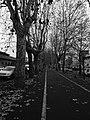 Alessandria (Piemonte, Italy) (31713465314).jpg