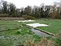 Alresford - Watercress Beds - geograph.org.uk - 1615985.jpg