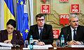 Andrei Dolineaschi, Liviu Dragnea si Ecaterina Andronescu la reuniunea BPN al PSD - 03.02.2014 (12286269145).jpg