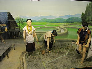 Apatani people - Image: Apatani diorama