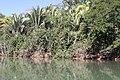 Araguainha - State of Mato Grosso, Brazil - panoramio (1056).jpg
