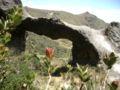 Arch+at+Cerro+de+Arcos+Ecuador.jpg