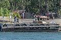 Archipelago D81 4536 (48475158647).jpg