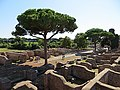 Area archeologica di Ostia Antica - panoramio (14).jpg