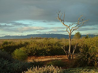 Port Augusta West, South Australia - Australian Arid Lands Botanic Garden