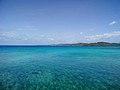 Arrecife coralino de Roatán.jpg