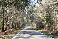 Ashley River Road 2.9 mi N of Bees Ferry Rd 2.JPG