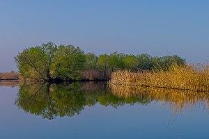 Volodarsky District, Astrakhan Oblast - Astrakan Reserve, Vodolarsky District