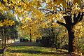 Autumn garden EUI (6542975795).jpg