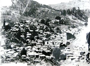 Avdella - Panorama of the village Avdella. 1898. Photo taken by Manaki Brothers (Damaged glass plate)