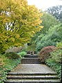 Azalea Dell, Dartington, in autumn - geograph.org.uk - 270267.jpg