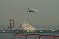 B737-881(JA51AN) landing @HND RJTT (2554162648).jpg