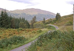 Glen Orchy - The B8074 road runs the length of Glen Orchy, generally following the line of the River Orchy, but not here, south of Arichastlich