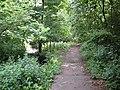 Badocks Wood - geograph.org.uk - 864979.jpg