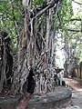 Bakreswar Temples and Hot spring 19.jpg