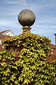 Ball finial and Boston Ivy in Cliftonville Margate Kent England.jpg